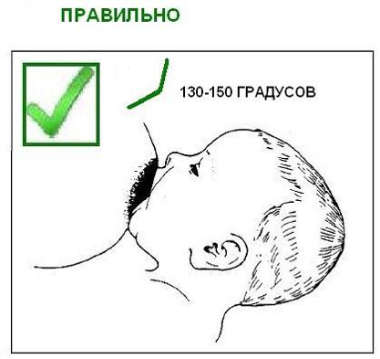 Правильное прикладывание к груди ребенка