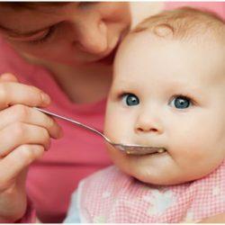 Рациональный прикорм ребенка в 6 месяцев