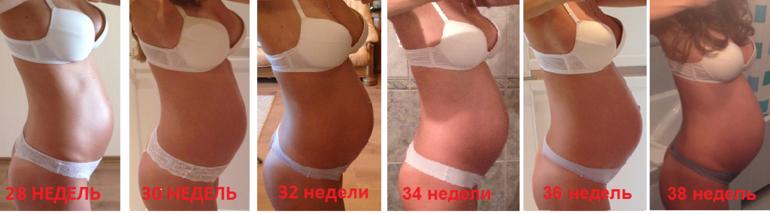 Живот по неделям беременности