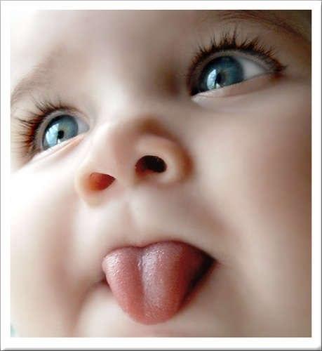 Жимолость укрепит иммунитет ребенка и мамы