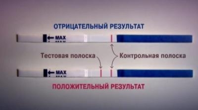 Тест полоски на беременность - что означает одна или две полоски