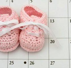 Определить срок беременности по дате зачатия — калькулятор