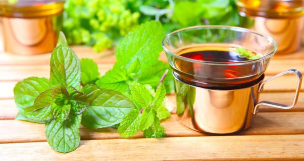 Чай с мелиссой при грудном вскармливании и период беременности