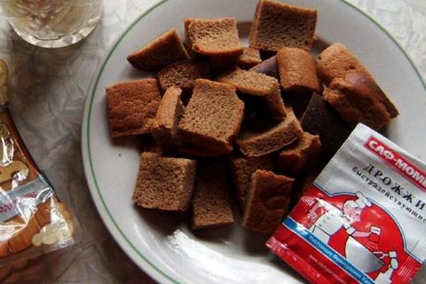 Как готовить квас в домашних условиях
