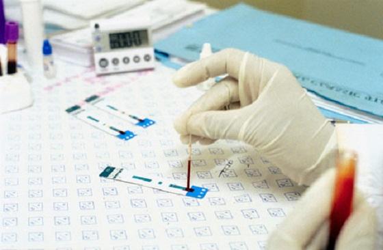Как правильно сдать анализ крови на ХГЧ при беременности