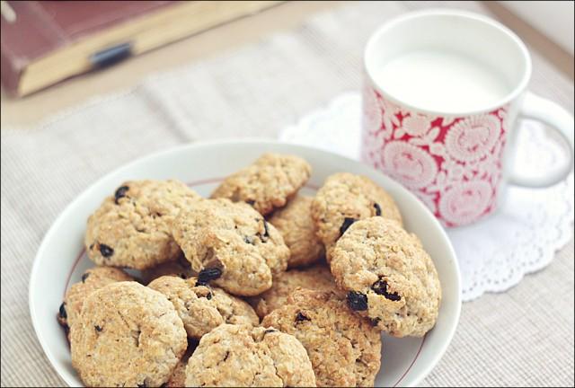 Можно ли овсяное печенье при грудном вскармливании