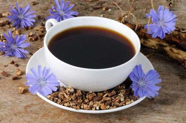 Цикорий достойная замена кофе