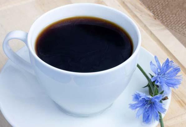 Цикорий, как альтернатива кофе
