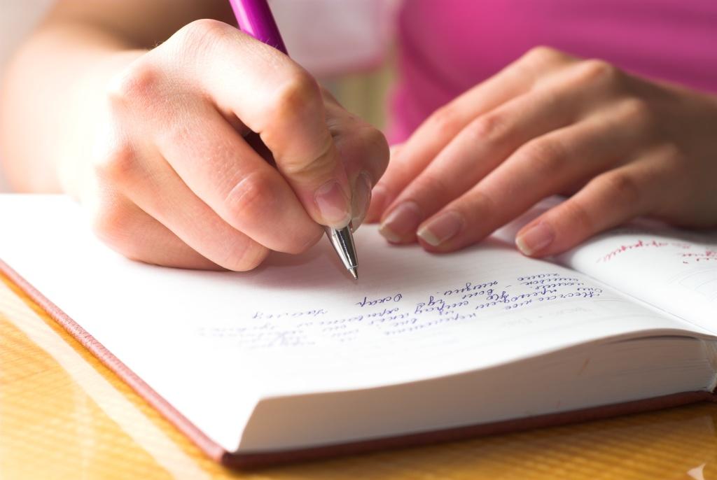 Ведите дневник беременности