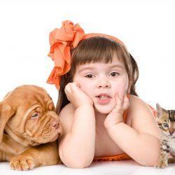 Что делать, если ребёнок боится собак и кошек