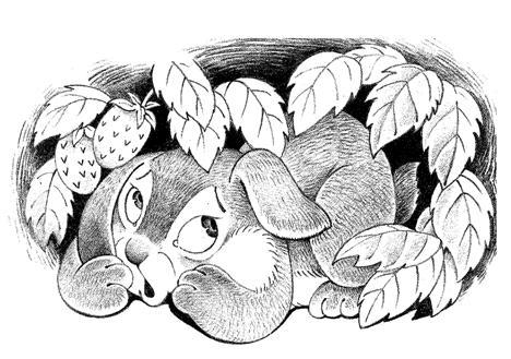 Заяц Серое ухо