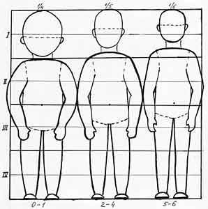 Пропорции головы и тела
