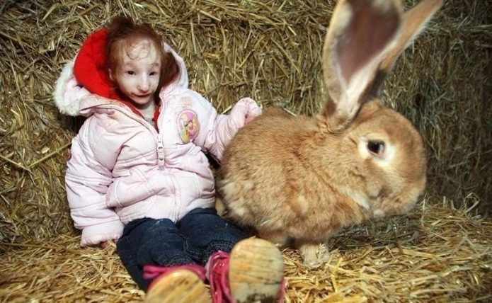 Шарлотта Гарсайд и кролик