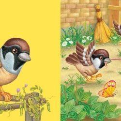 Изучаем животных и птиц с ребенком