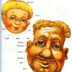 Первый словарик ребенка