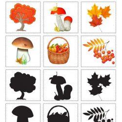 Найди тень — тема осень