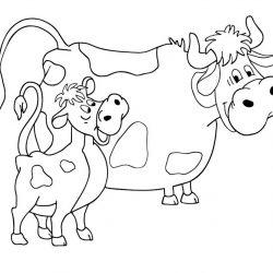 Корова и Бык раскраски
