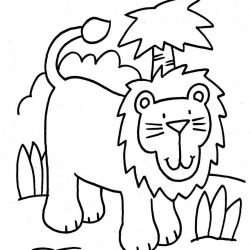 Лев - раскраски