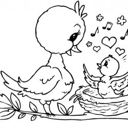 Птицы — раскраски