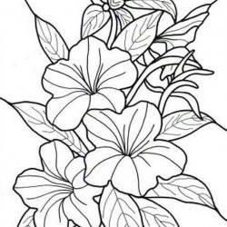 Тропические цветы - раскраски
