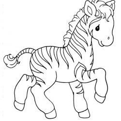 Зебра — раскраски