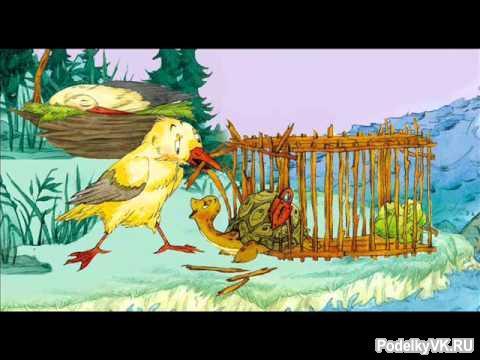 Чайка и черепаха сказка