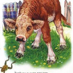 Изучаем домашних животных в стихах