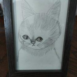 Учимся рисовать кота