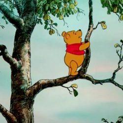 Сказка - Винни-Пух и медовое дерево