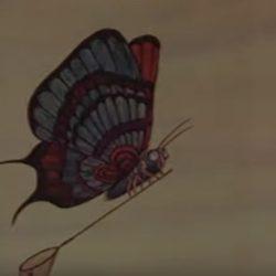 Мультик — Бабочка