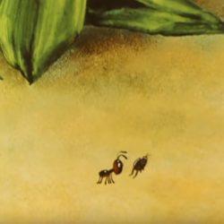 Мультик — Путешествие муравья